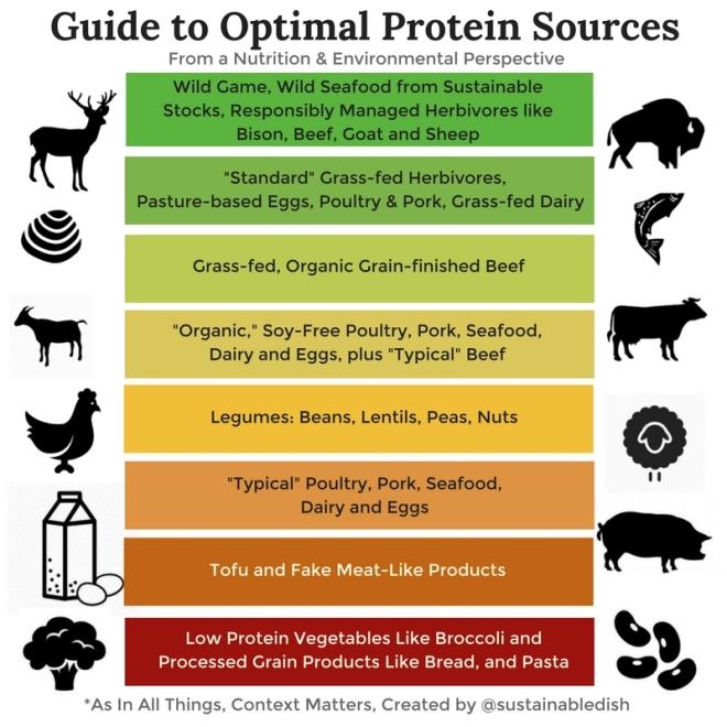 better protein.jpg