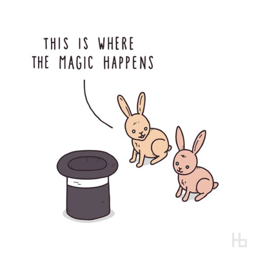 like wabbits.jpg